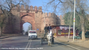 Travelling with a horse and cart in India