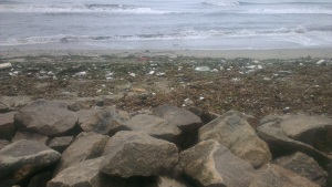 Mahatma Ghandi beach - the dirtiest beach I've ever seen