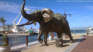 Elephant sculpture at the V&A Waterfront, Cape Town, South Africa