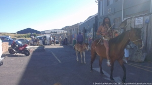 Horserider at Hout Bay, South Africa